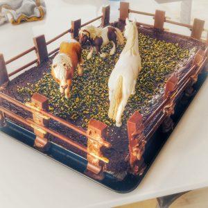 Geburtstagskuchen, Kuchen, Torte, Pferdekoppel, Schleichtiere, Schokoladenkuchen,Pferdeparty, Pferde, Kindergeburtstag, Geburtstagsparty, Party, Kinder, Mottoparty