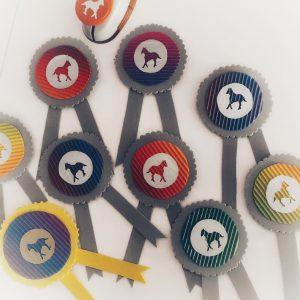 Parcour, Pferdeparty, Pferde, Kindergeburtstag, Geburstagsspiel, Hürdenlauf, Pferdeturnier, Steckenpferde, Geburtstagsparty, Party, Kinder, Mottoparty